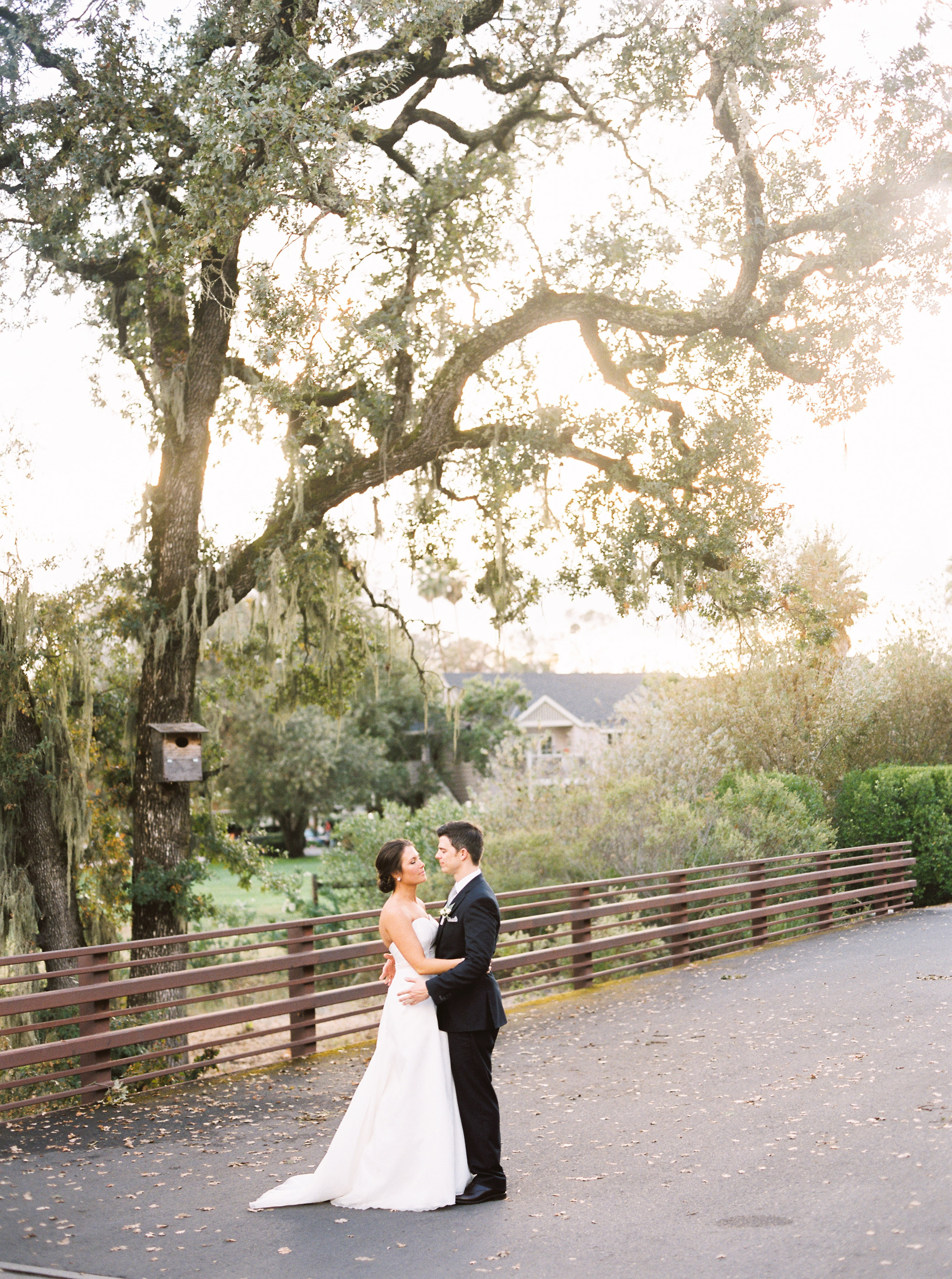 intimate-wedding-at-solage-calistoga-in-napa-167.jpg