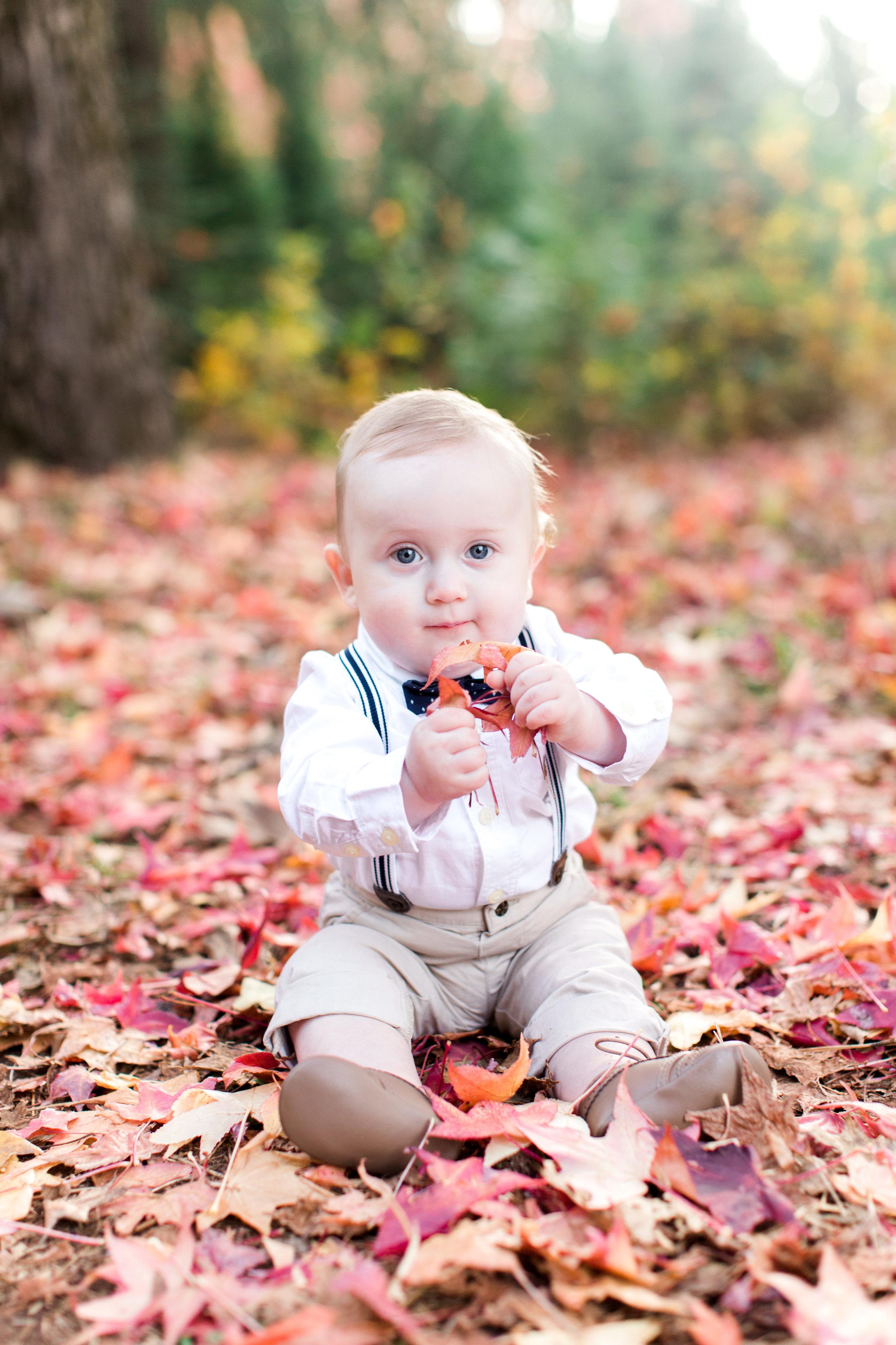 apple-hill-family-shoot-7.jpg