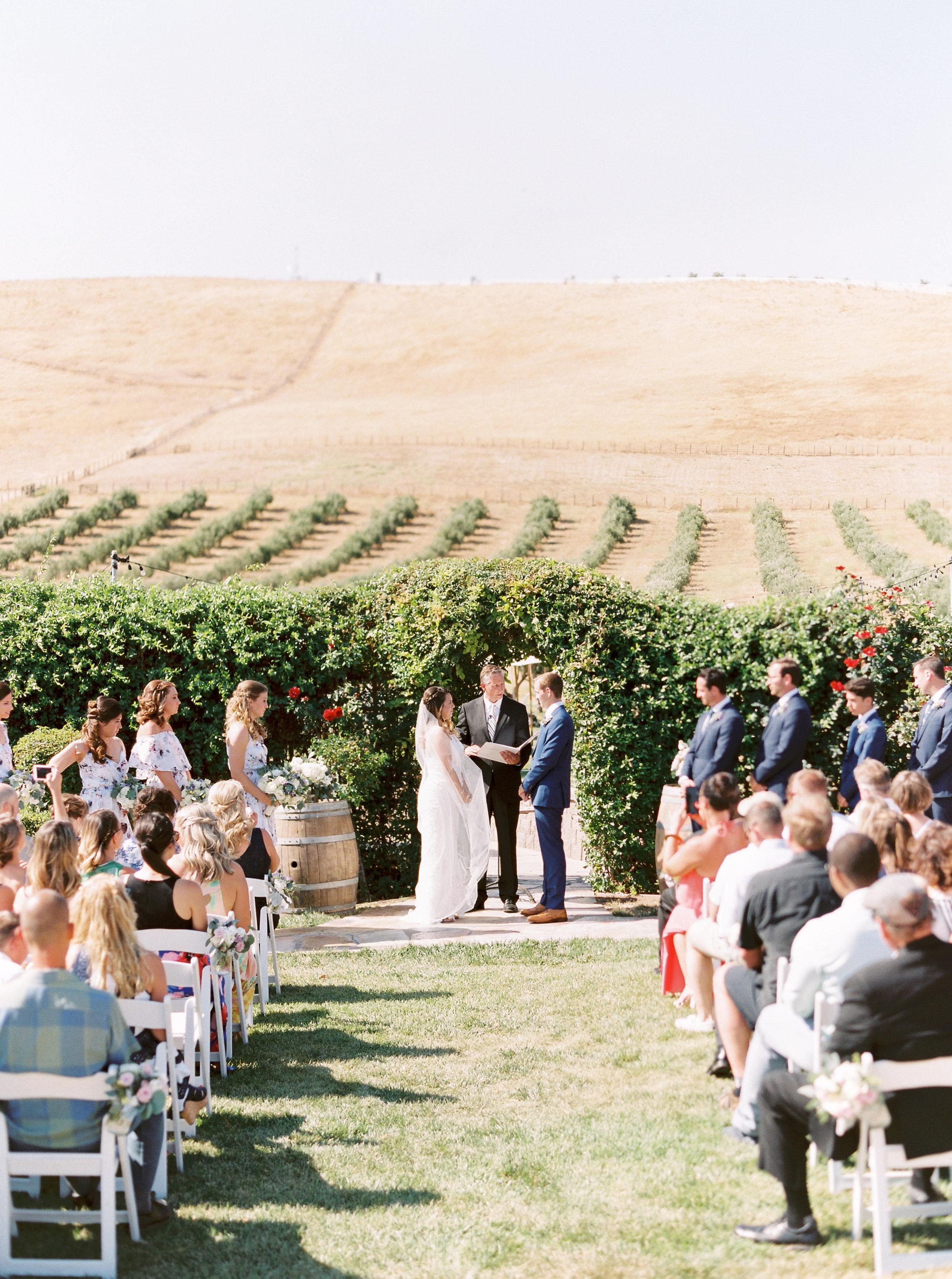 the-purple-orchid-resort-wedding-in-livermore-california-163.jpg
