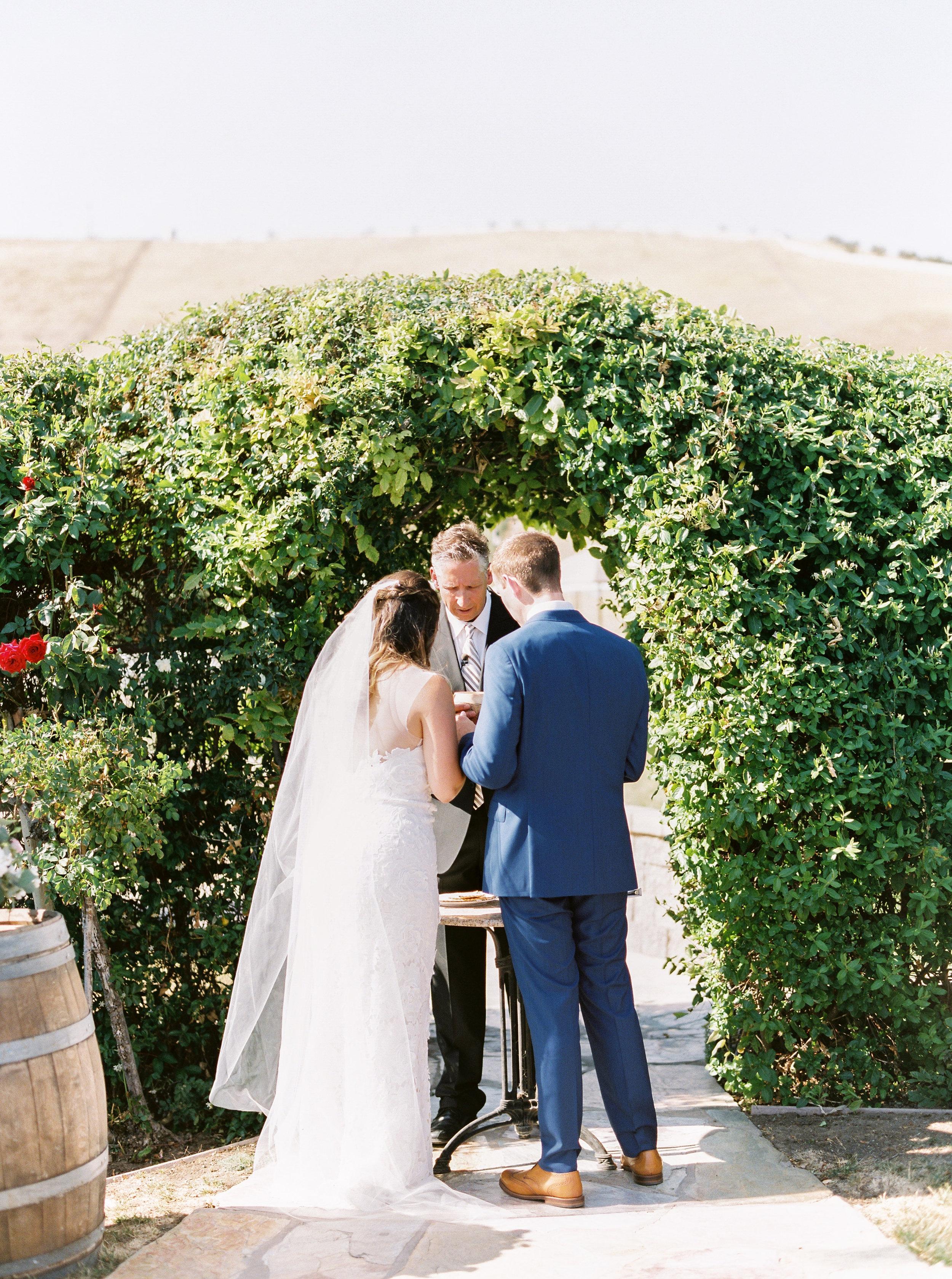 the-purple-orchid-resort-wedding-in-livermore-california-167.jpg