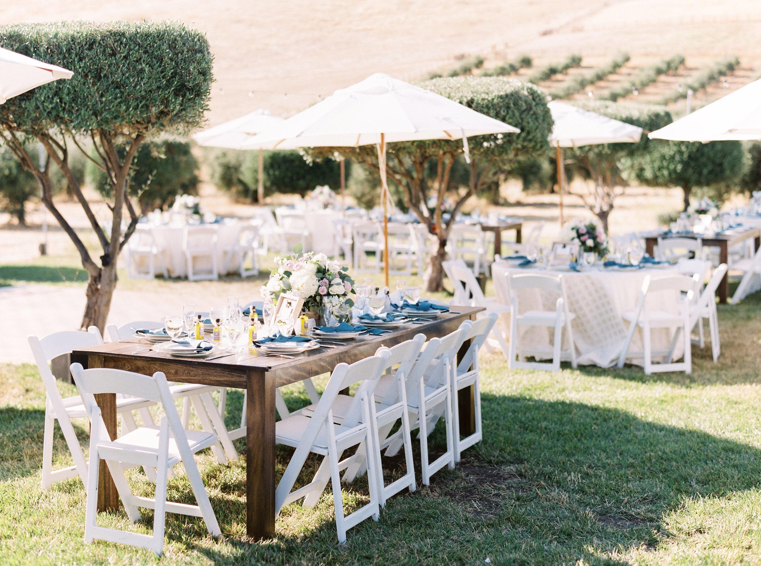 the-purple-orchid-resort-wedding-in-livermore-california-238.jpg
