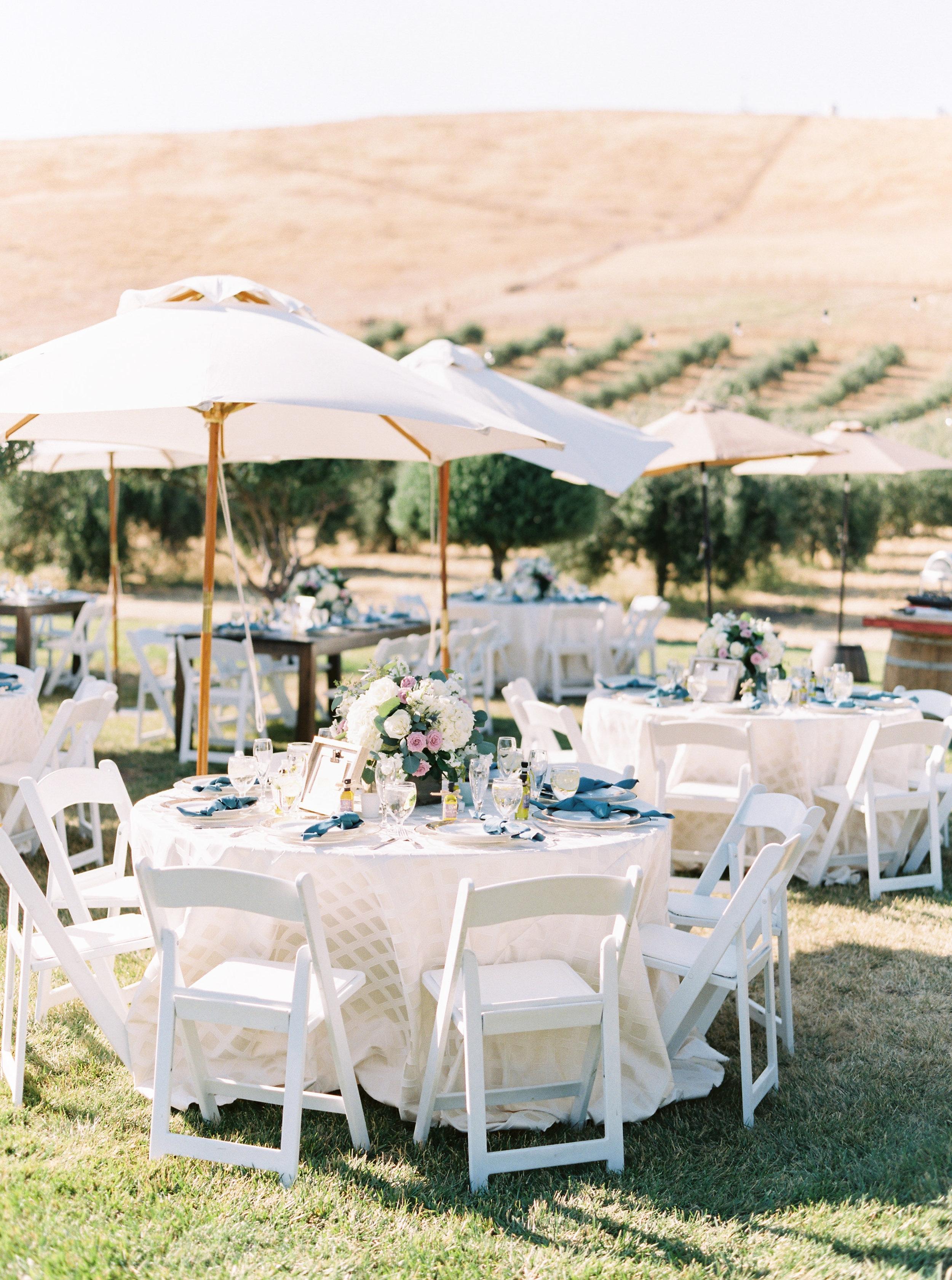 the-purple-orchid-resort-wedding-in-livermore-california-240.jpg