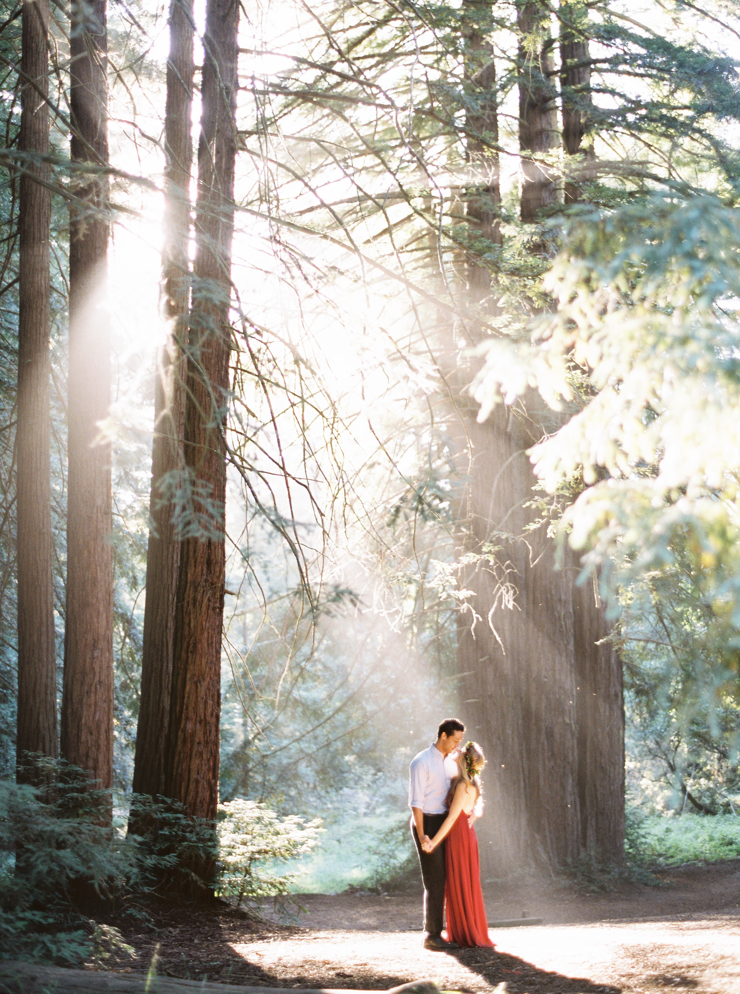 redwood-forest-engagement-in-oakland-california-15.jpg