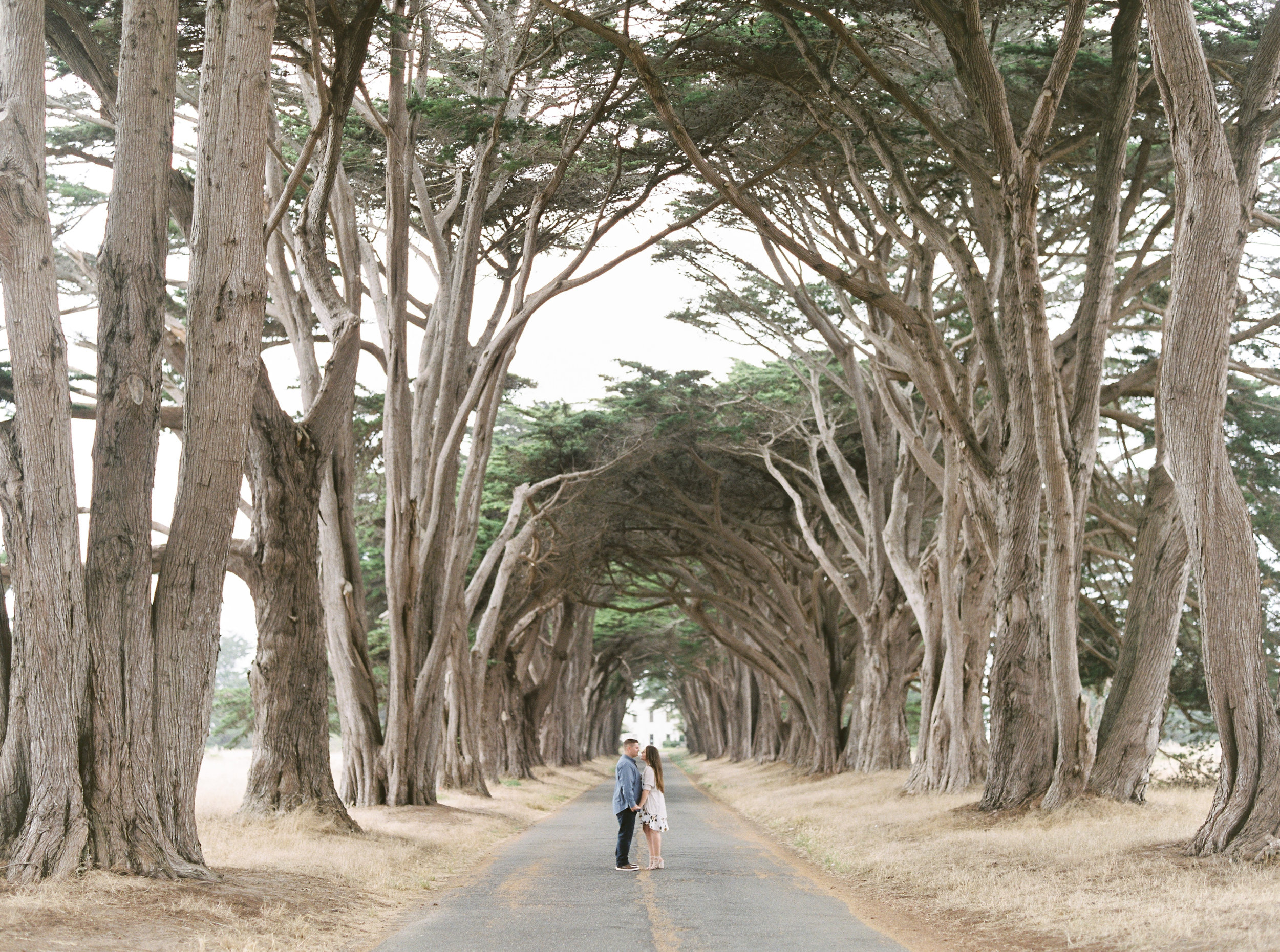 Point-reyes-california-engagement-photographer-16.jpg