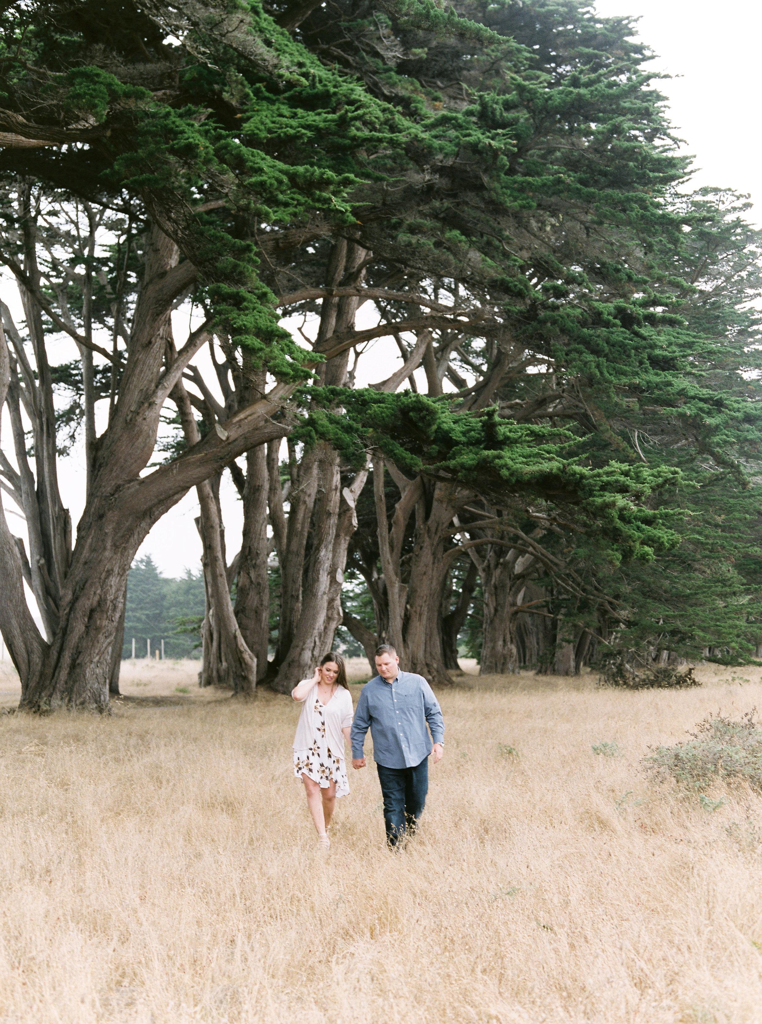 Point-reyes-california-engagement-photographer-45.jpg