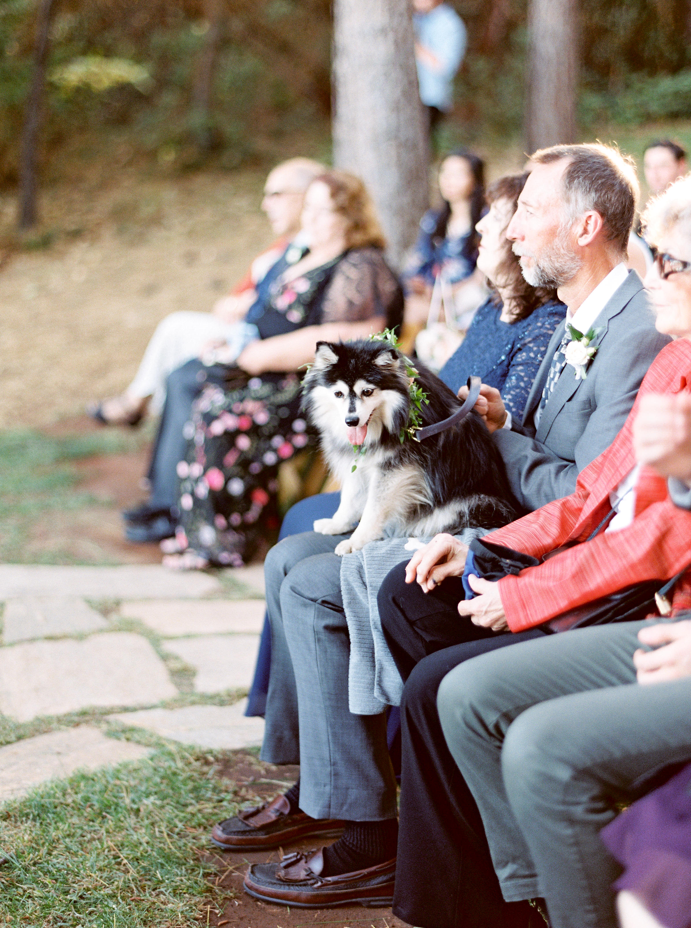 Forest-house-lodge-wedding-foresthill-california-1.jpg