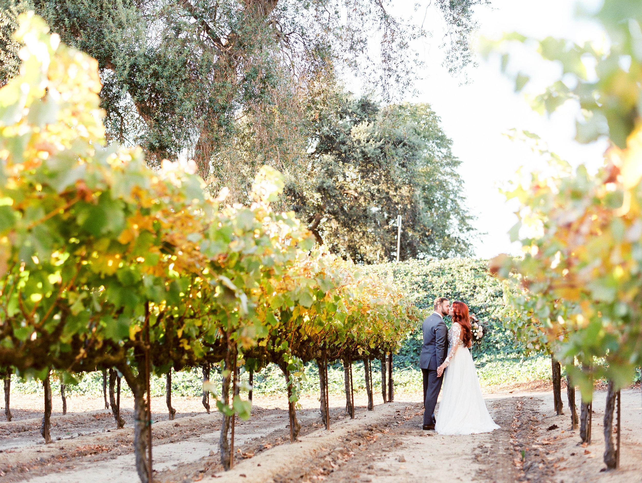 scribner-bend-vineyards-wedding-in-sacramento-california-41.jpg