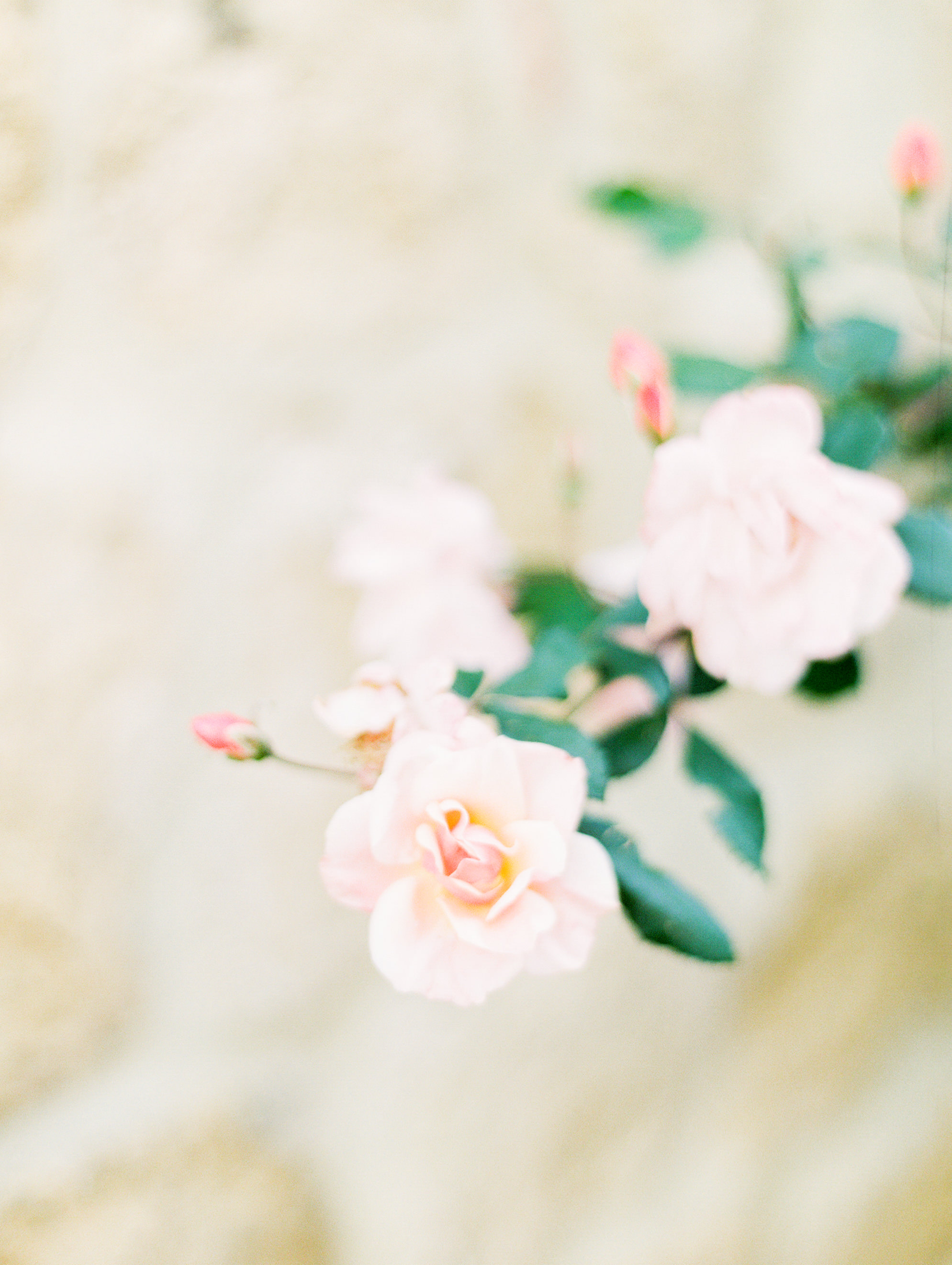 romantic-italy-wedding-in-tuscany-7.jpg