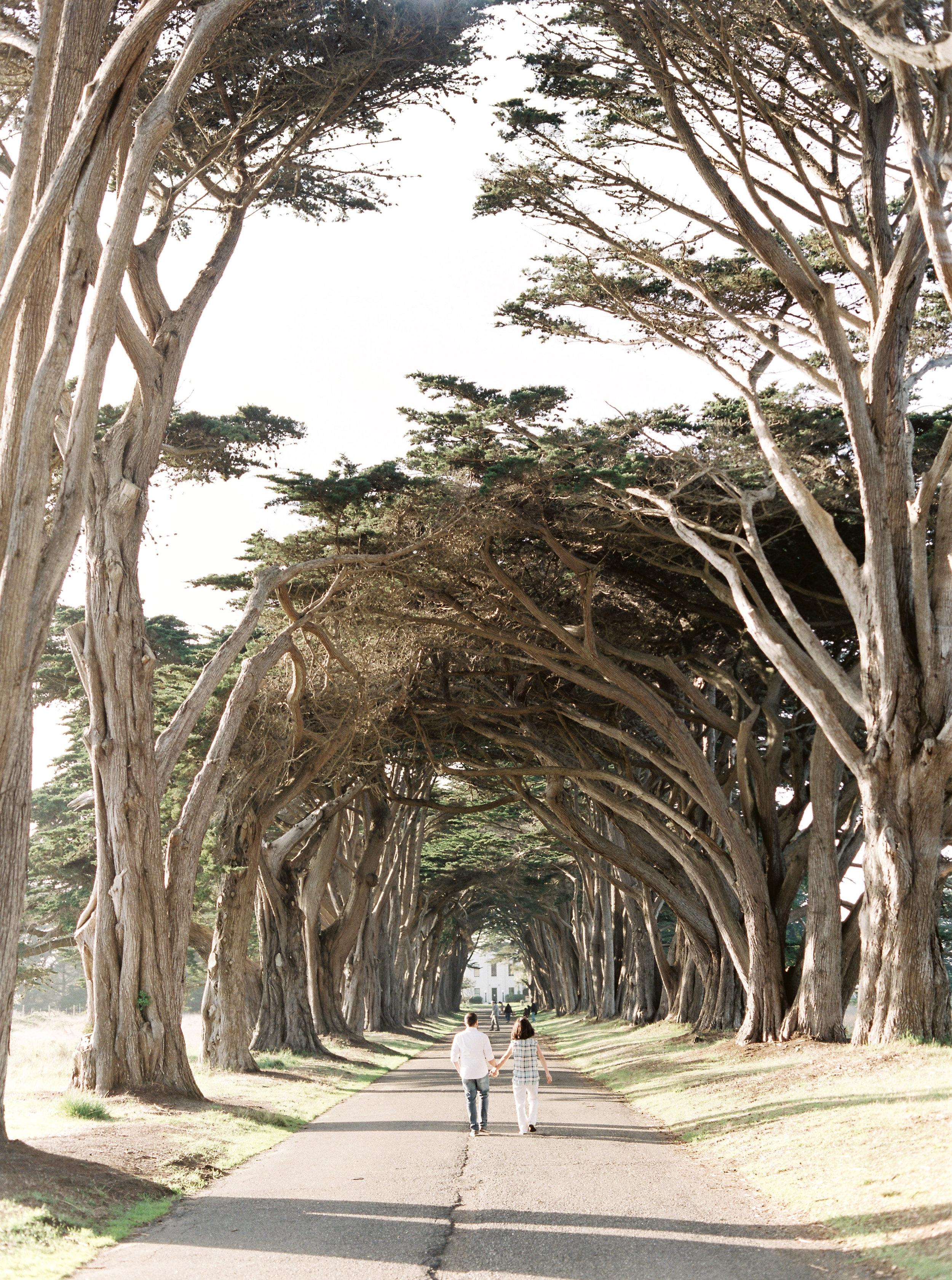 Point Reyes Engagement shoot - destination wedding photographer-9.jpg