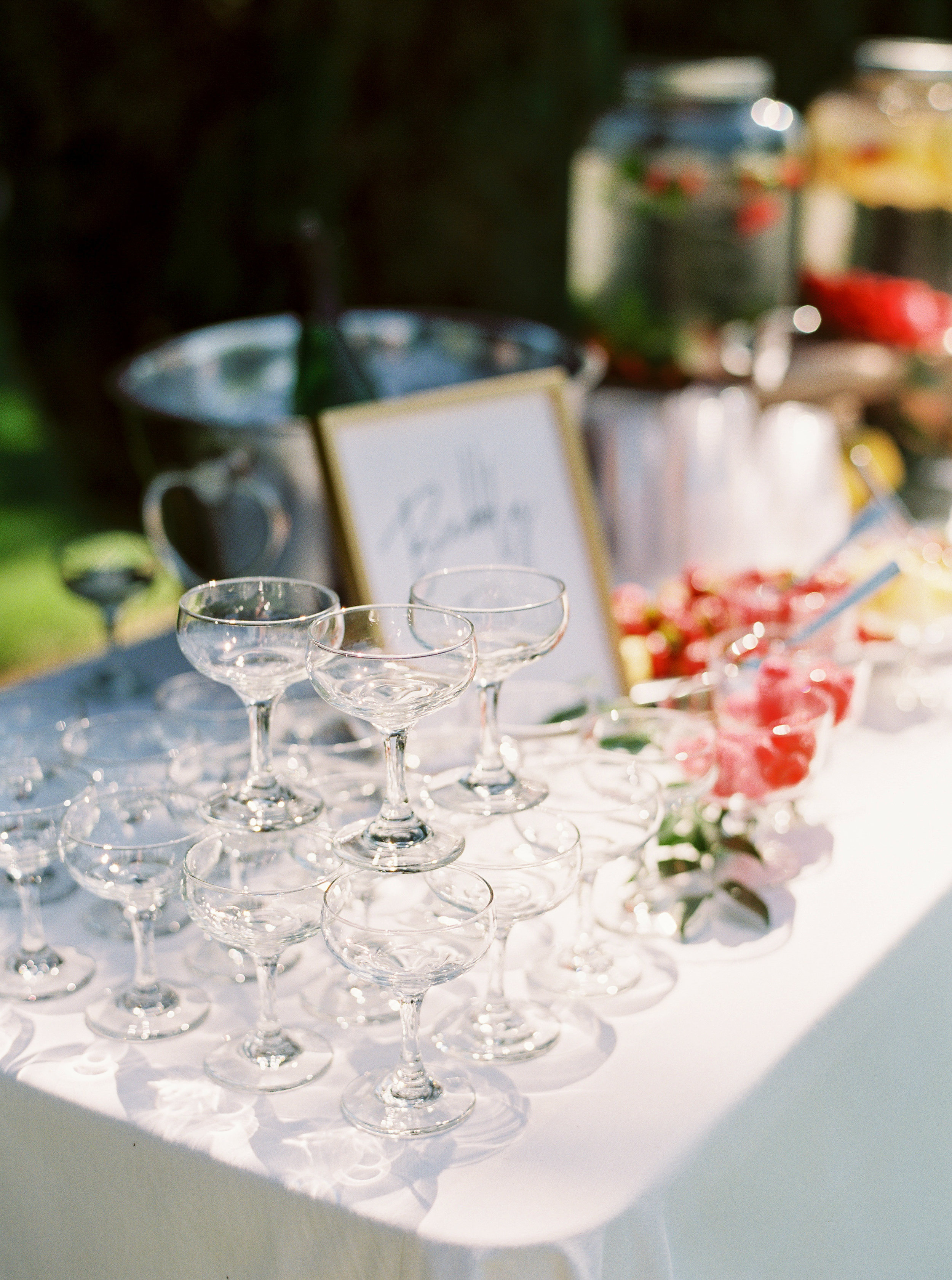 Durst-winery-wedding-in-lodi-calfornia-167.jpg