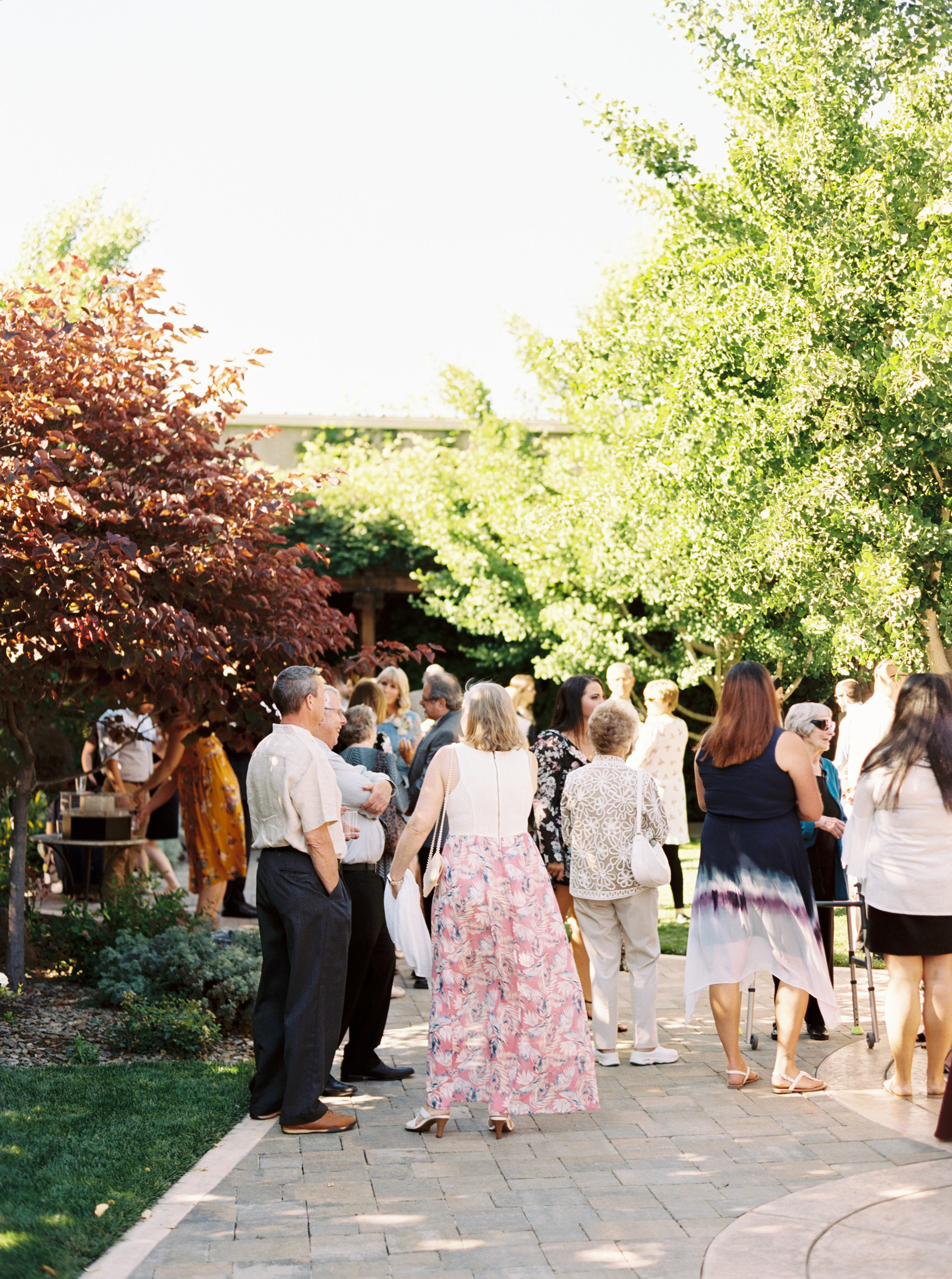 Crooked-vine-winery-wedding-in-livermore-california-51.jpg