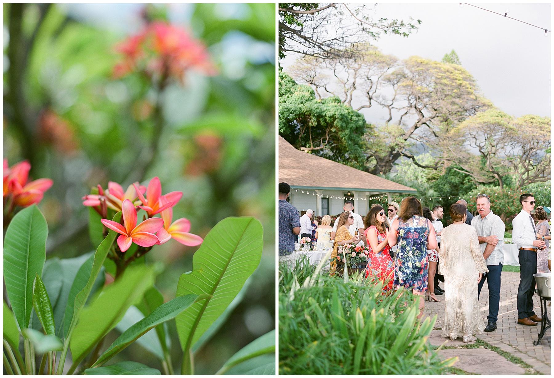 Olowalu-plantation-house-maui-hawaii-wedding-70.jpg