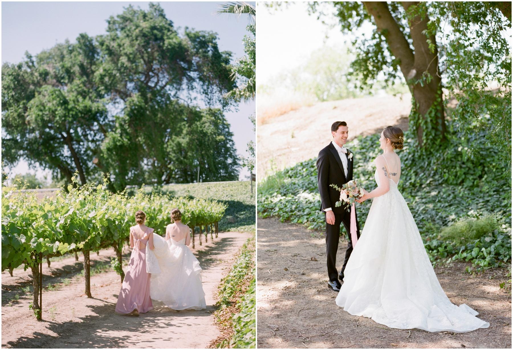 Scribner-bend-vineyards-wedding-sacramento-california-Kristine-Herman-Photography-73.jpg