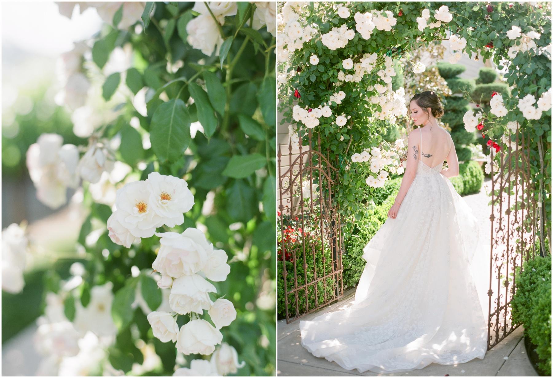 Scribner-bend-vineyards-wedding-sacramento-california-Kristine-Herman-Photography-225.jpg