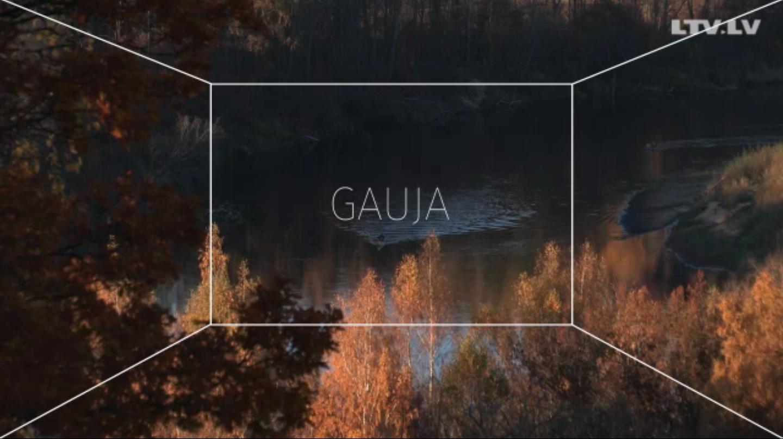 """1.  """"Gauja"""""""
