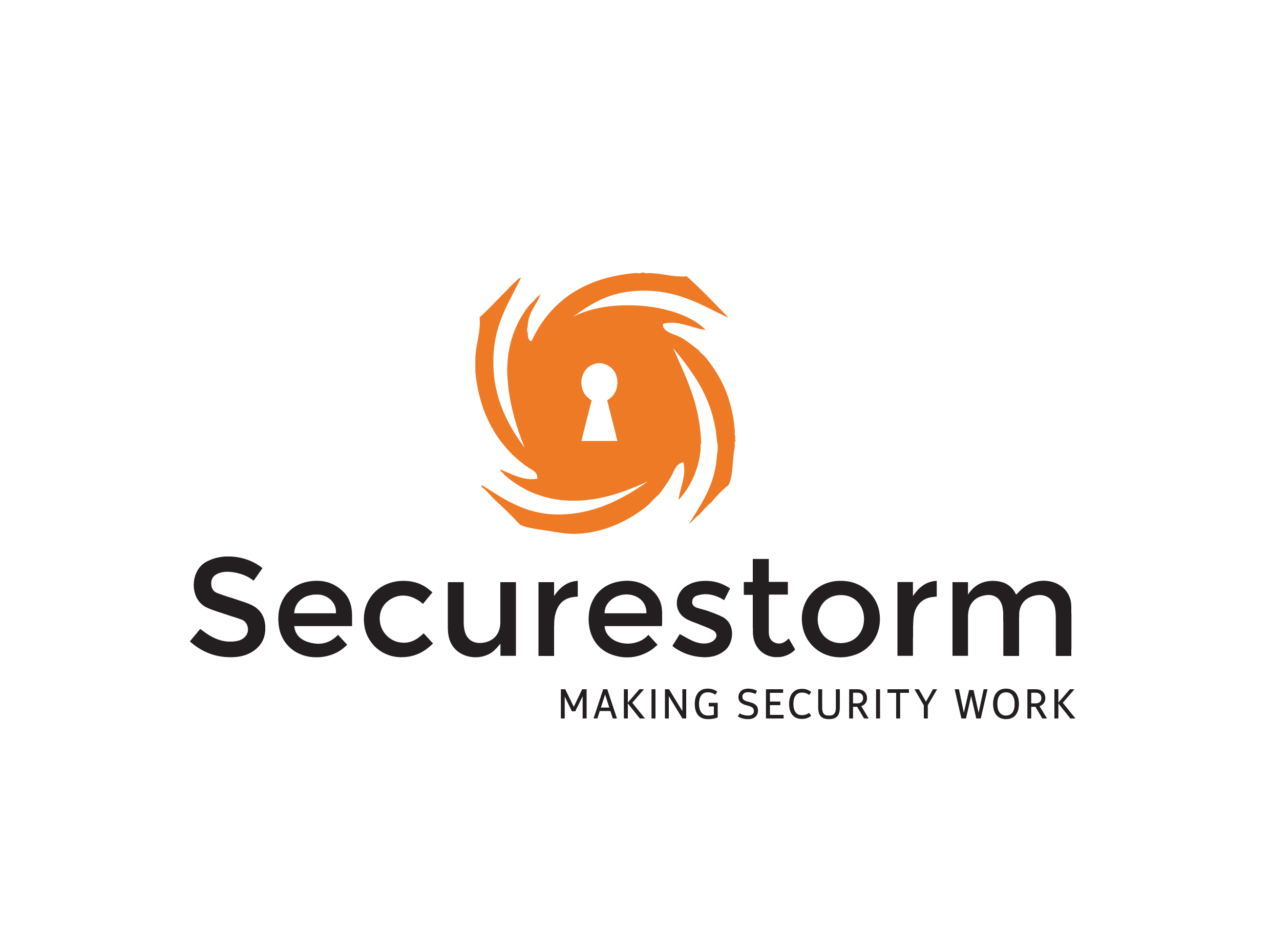 SecureStorm_Logo_MSW-02.jpg
