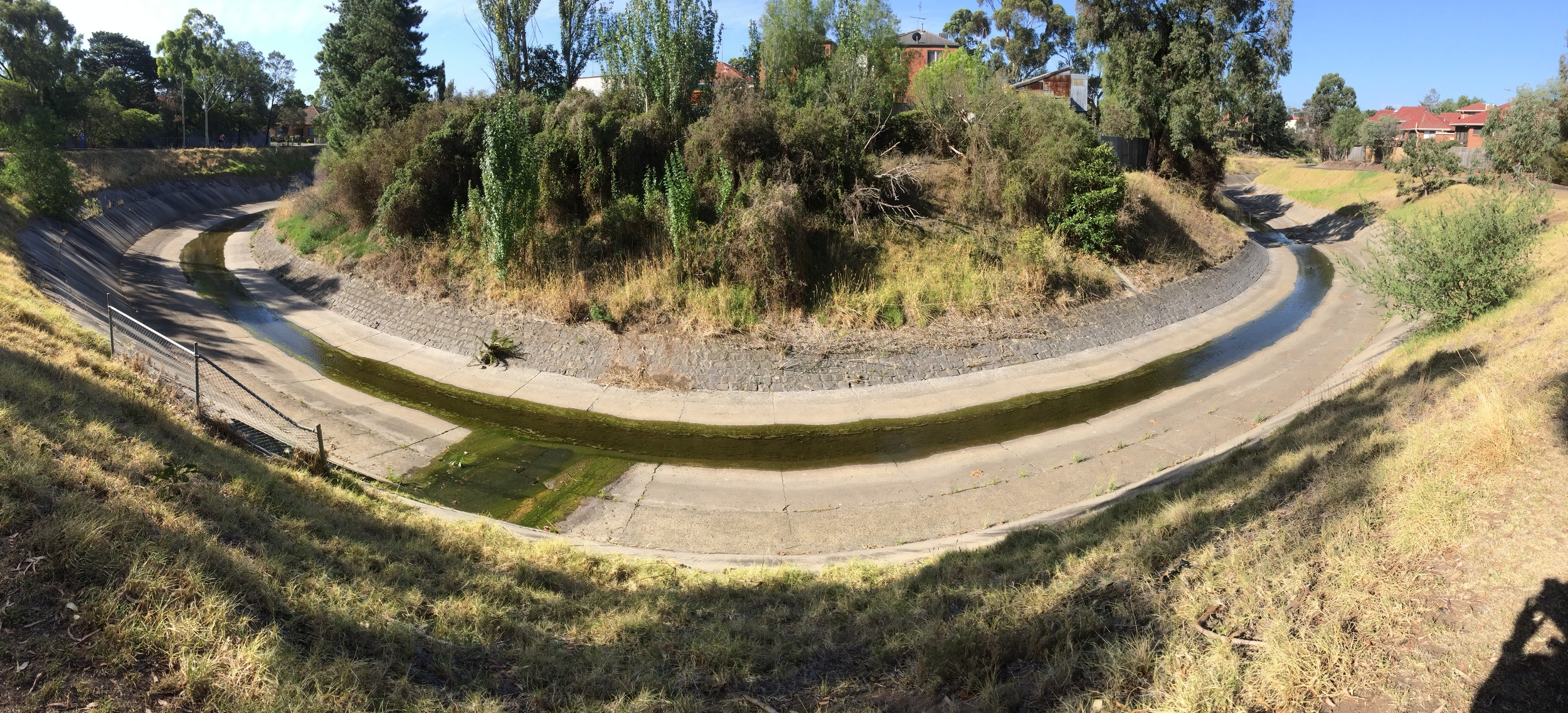Moonee Ponds Creek - a concrete-lined shadow of its former self, but still flowingits original course and yielding some valuable riparian habitat along its banks for urban birders to explore.