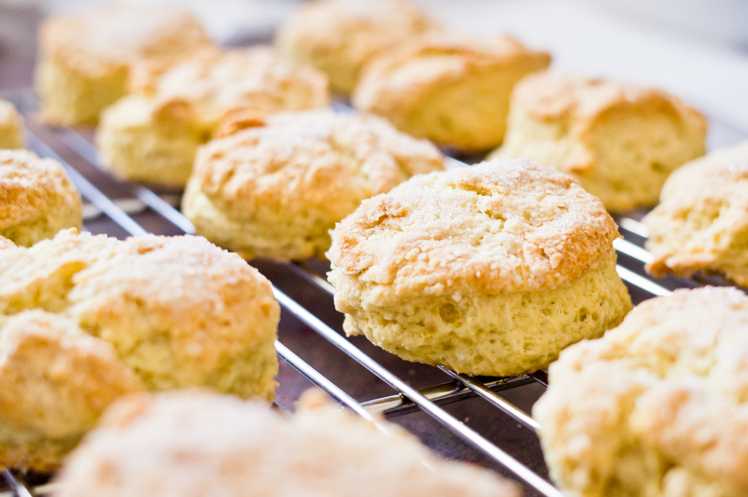 Twitchathon regulations are yet to catch up with performance-enhancing scones.
