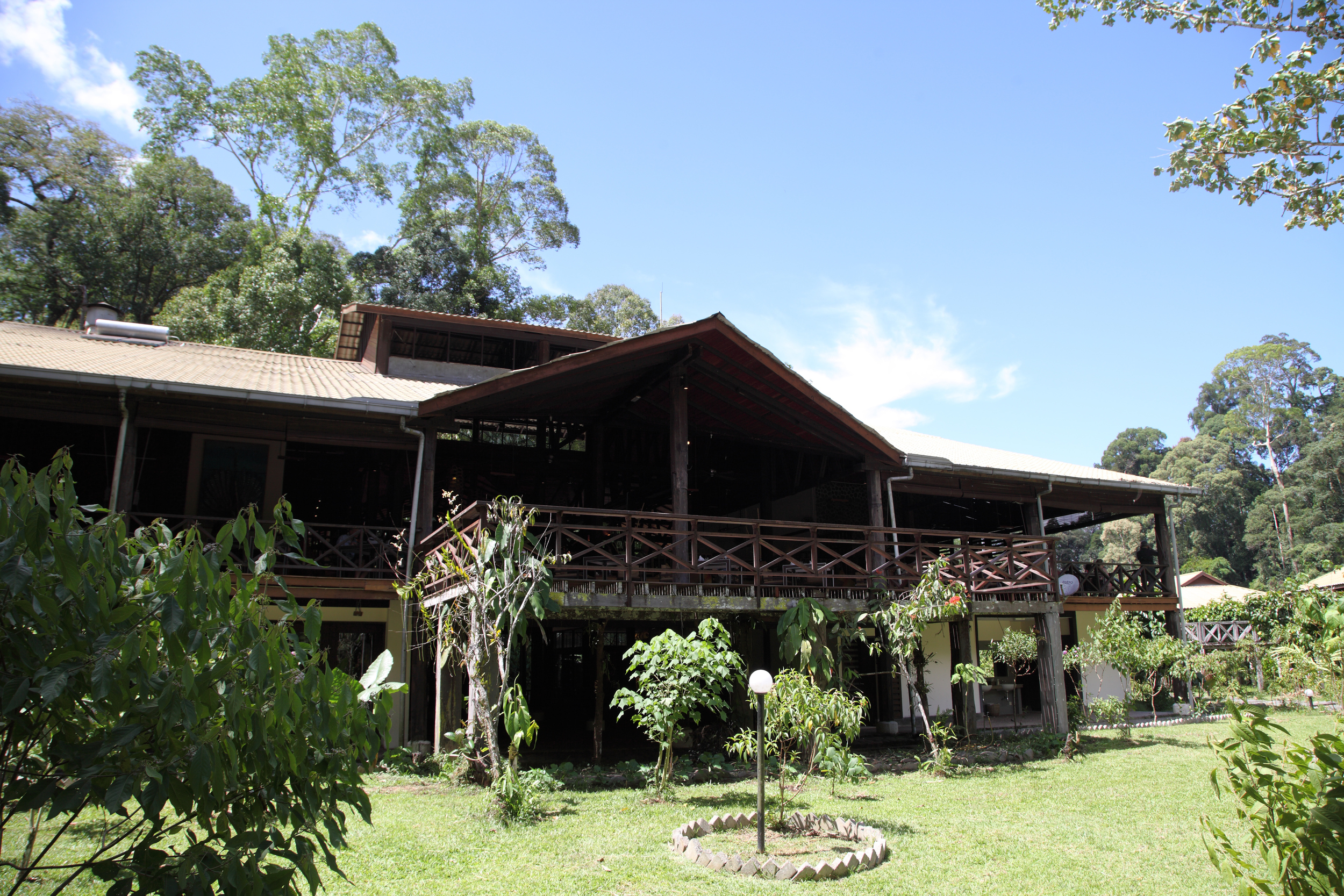 Danum Valley 05.jpg