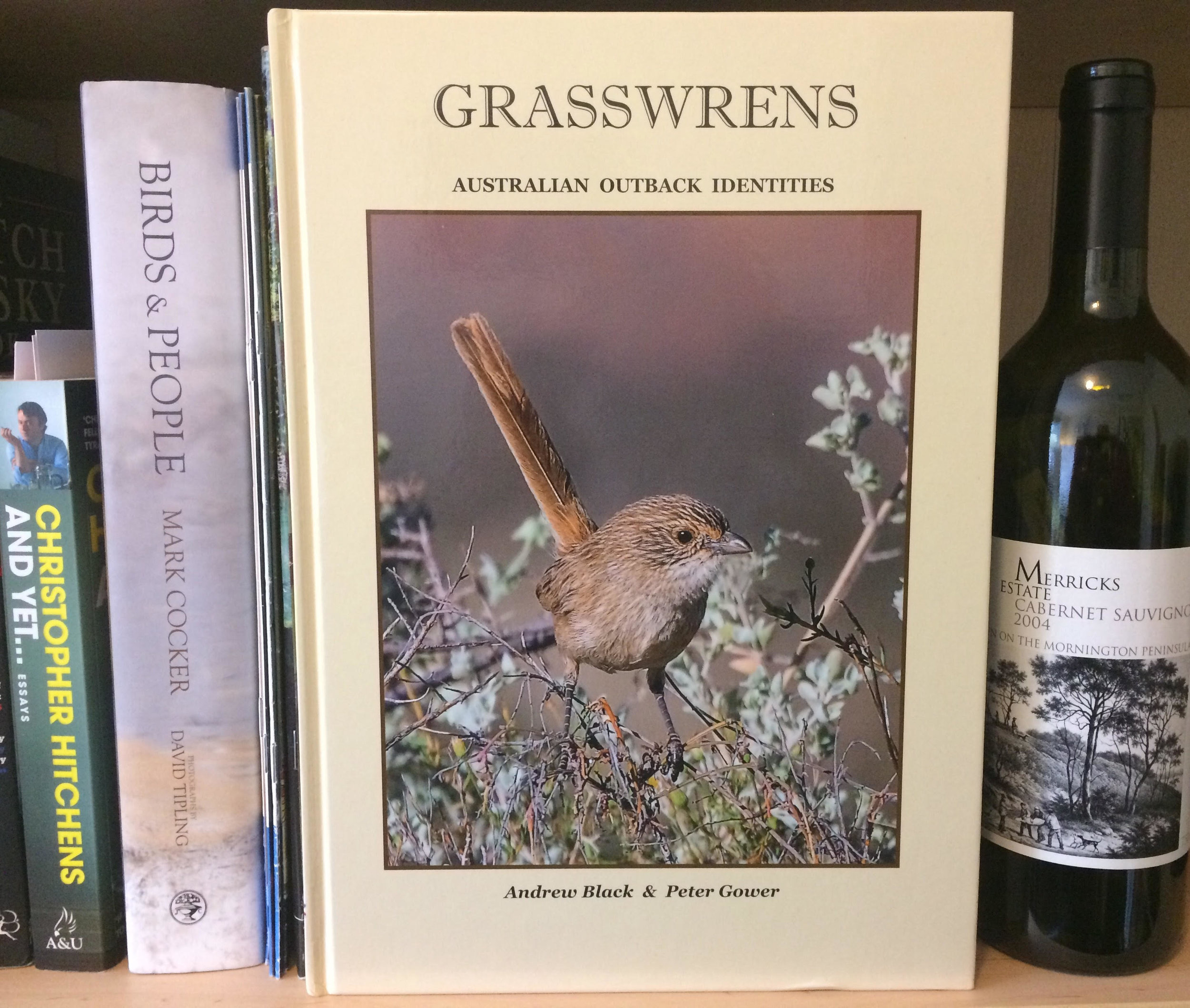 grasswrens aoidentities.jpg