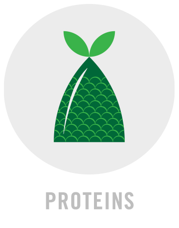 NourishIcons_large_Proteins.jpg