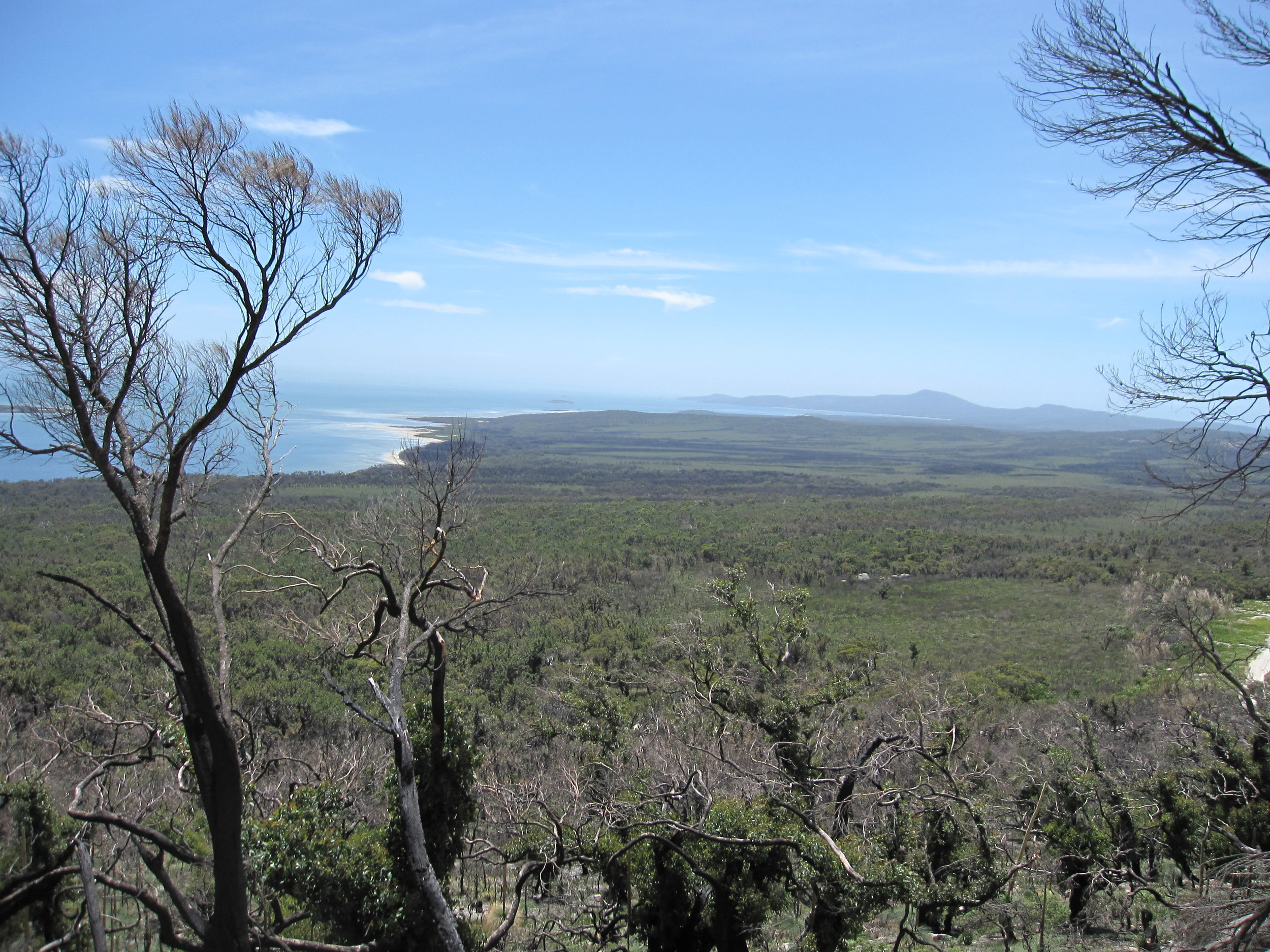 Distant Coastal View from Wilsons Prom