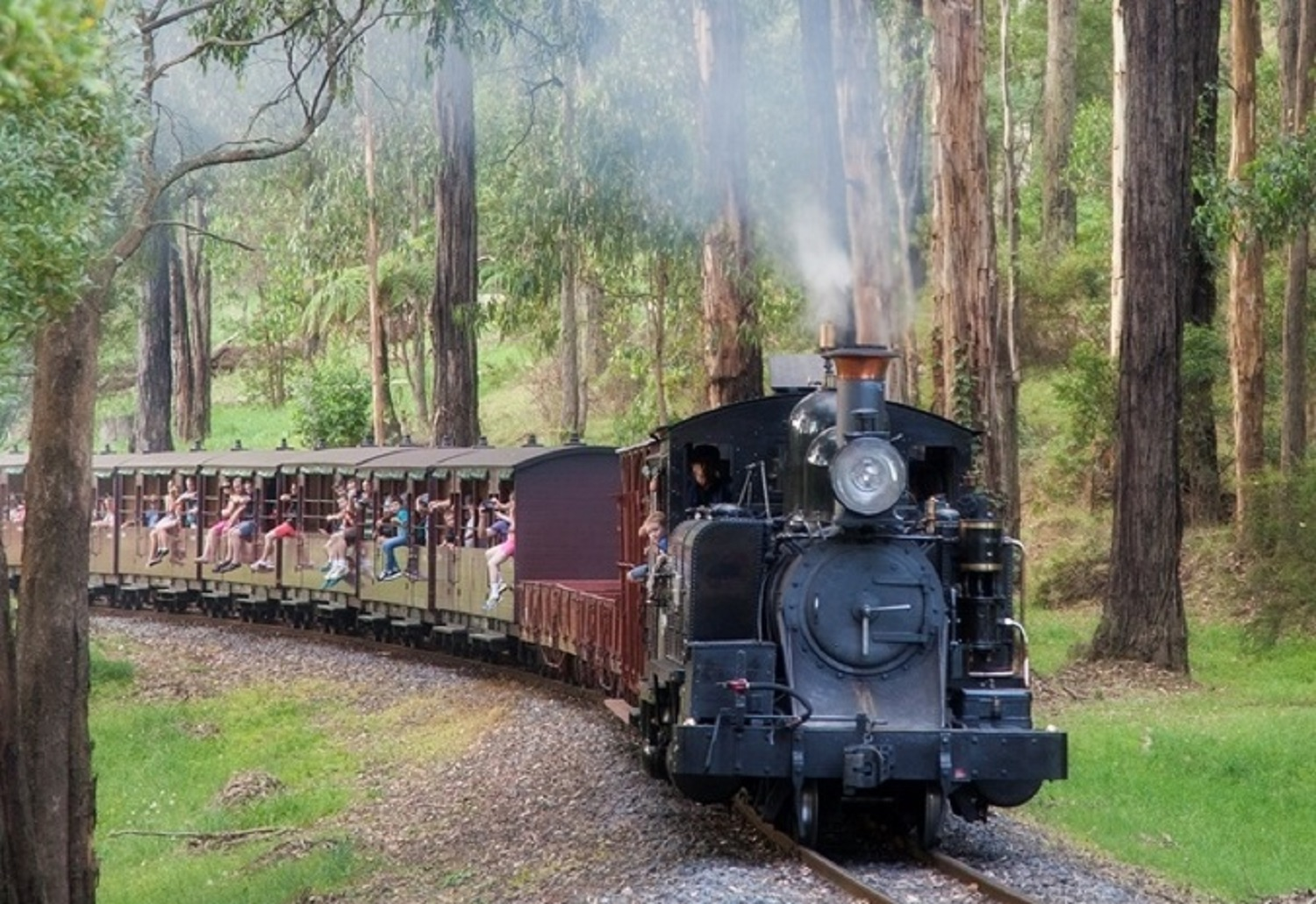 famous puffing billy steamtrain