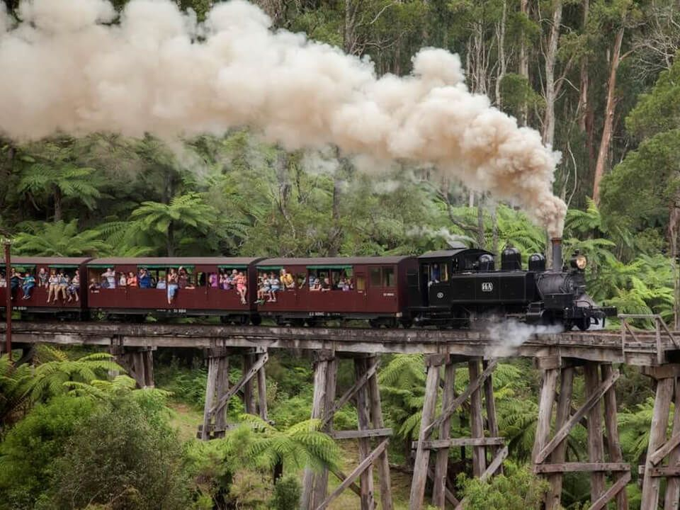 Puffing Billy Steam Train Trips