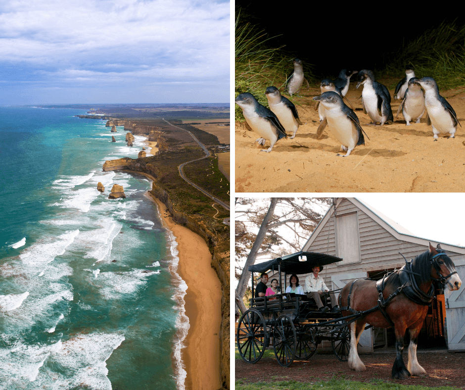 Great Ocean Road Phillip island Day Tour Package