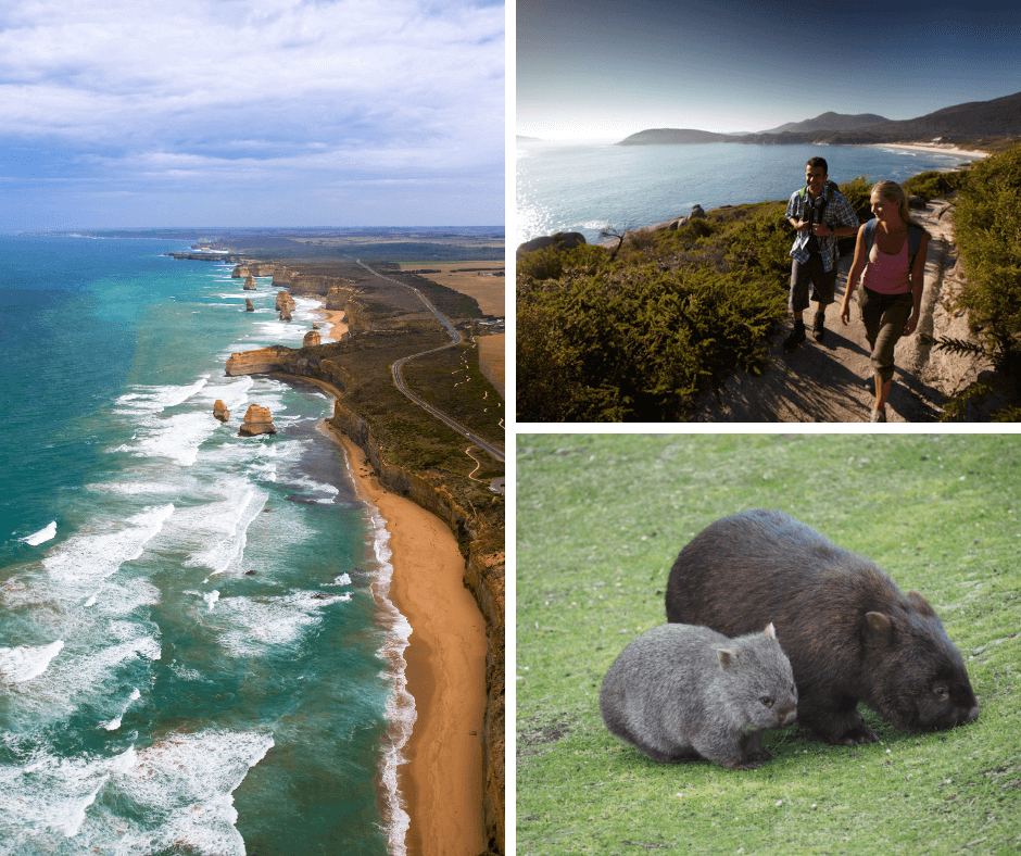 Wilsons Promontory Great Ocean Road Package