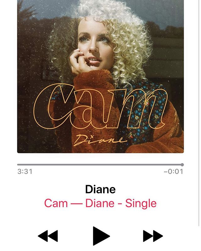 #DIANE is finally here!! Go download & stream!! Super fans & friends: #Diane needs you to share everywhere you can 💛 grassroots-style before this hits country radio 📻 (link in bio)