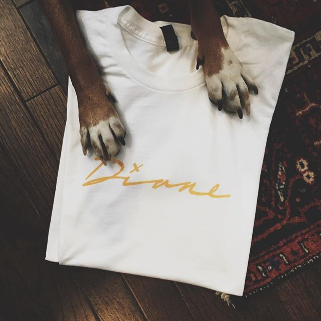 It's SO fun to read your reactions to #Diane!! Keep sharing-  my pup Honey is gonna send custom Diane shirts to the fans with the best posts 👕💛