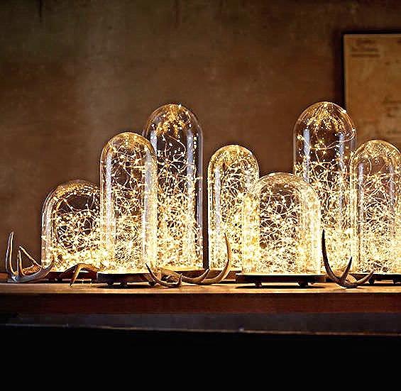 amazing bulbs