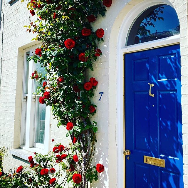 #Walking through #Cambridge this brightened up my day :) ⠀⠀ .⠀⠀ .⠀⠀ .⠀⠀ #curbappeal⠀⠀ #interiordesign⠀⠀ #rose⠀⠀ #painteddoor⠀⠀ #beautifuldestinations ⠀⠀ #walkinguk ⠀⠀ #passportready ⠀⠀ #naturelife ⠀⠀ #green ⠀⠀ #livehappy⠀⠀ #thenichehome⠀⠀ ⠀⠀