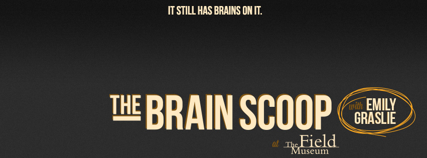 The-Brain-Scoop_logo.jpg