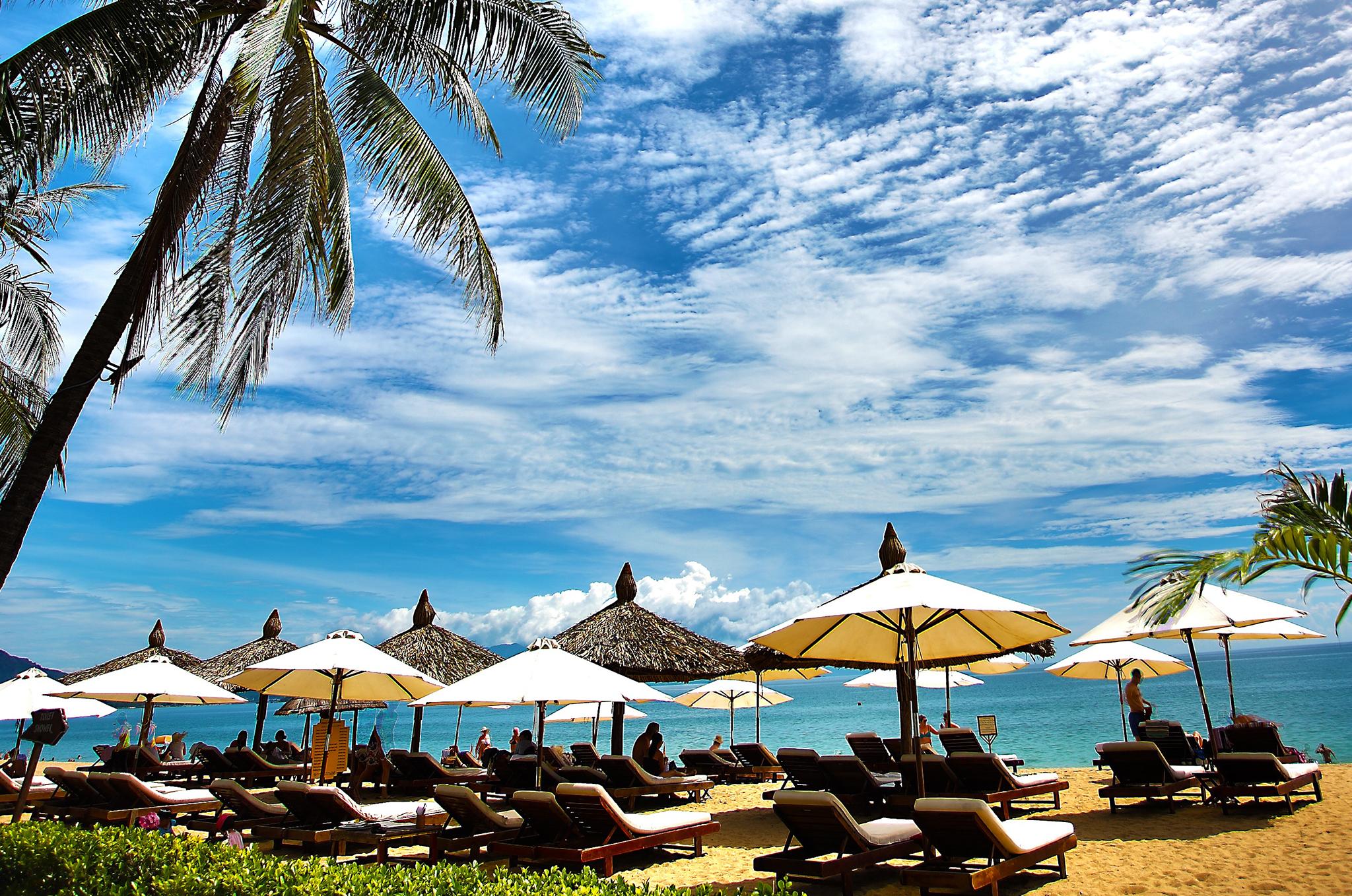 beachcrop.jpg