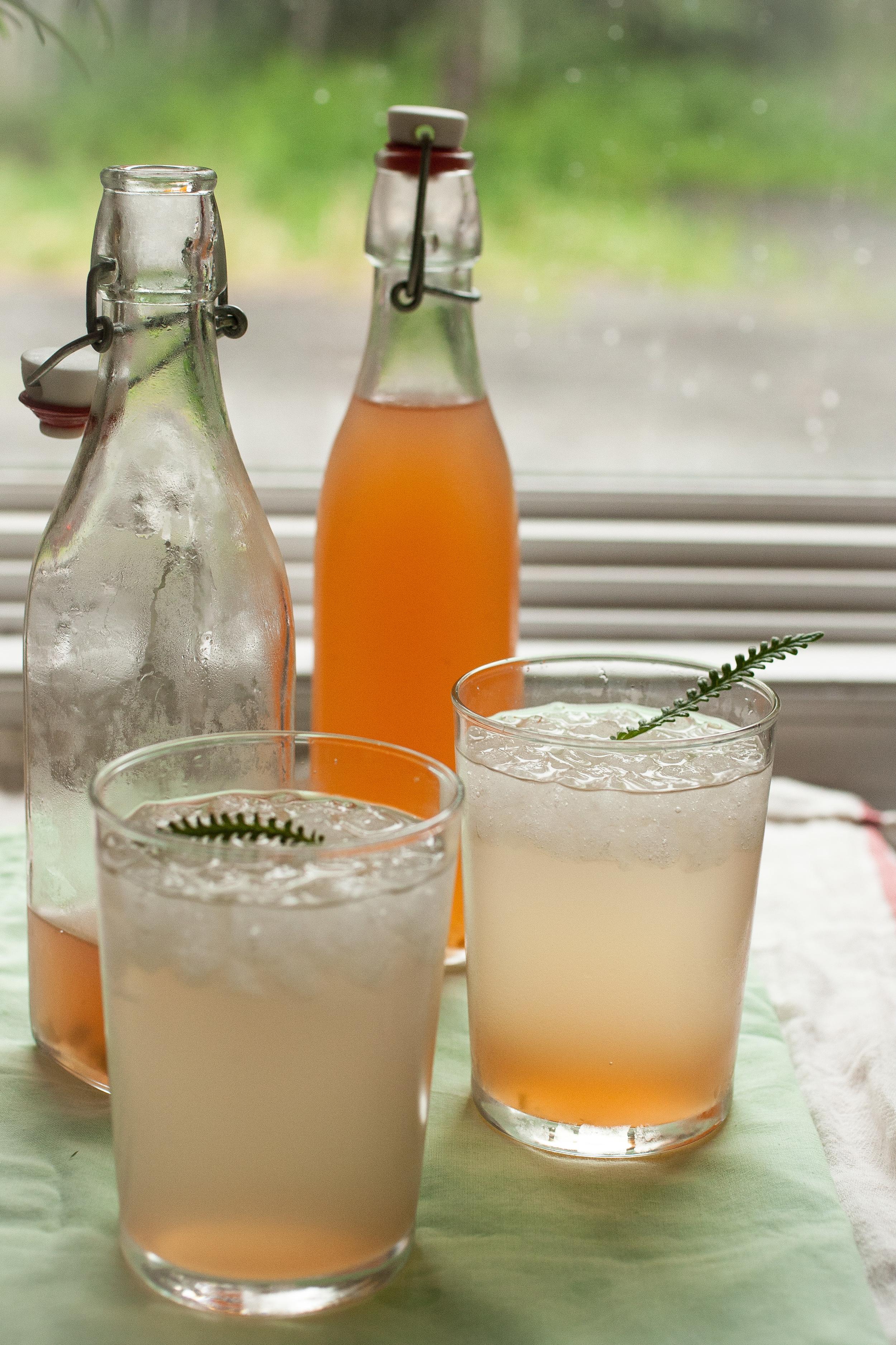 Produce On Parade - Lavender Rhubarb Shrub