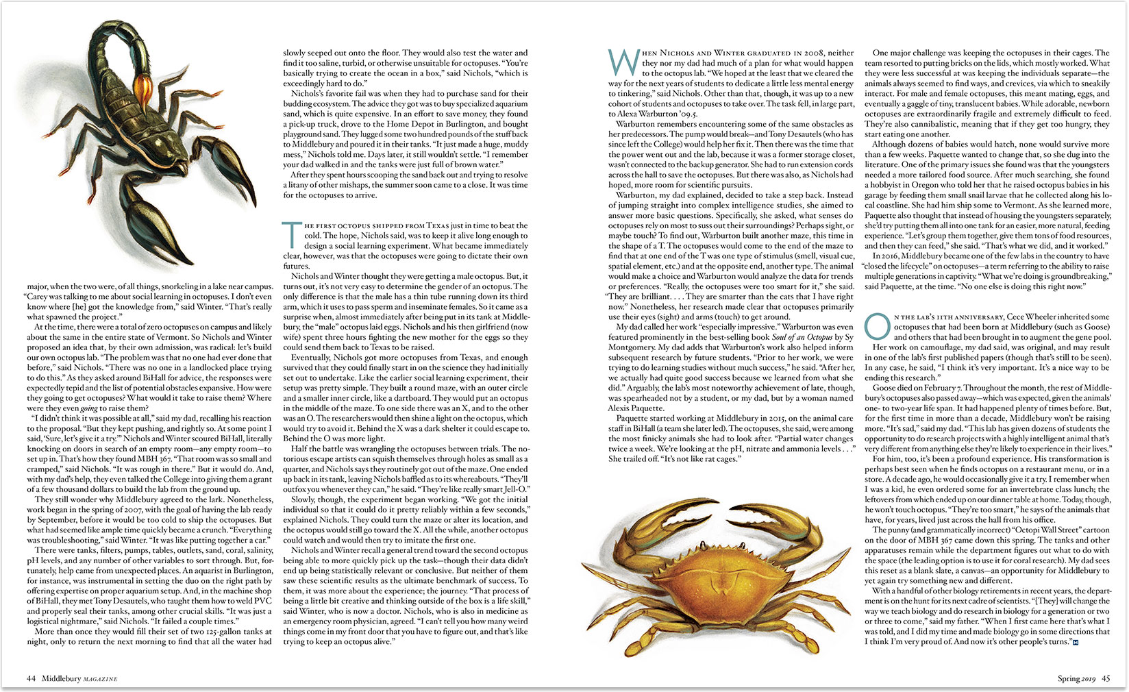 Octo_ScorpionCrab_Buzelli.jpg