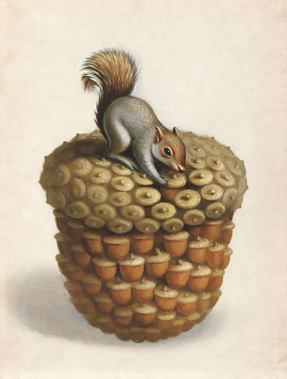 "Acorn/9.5""x12""/oil on board"
