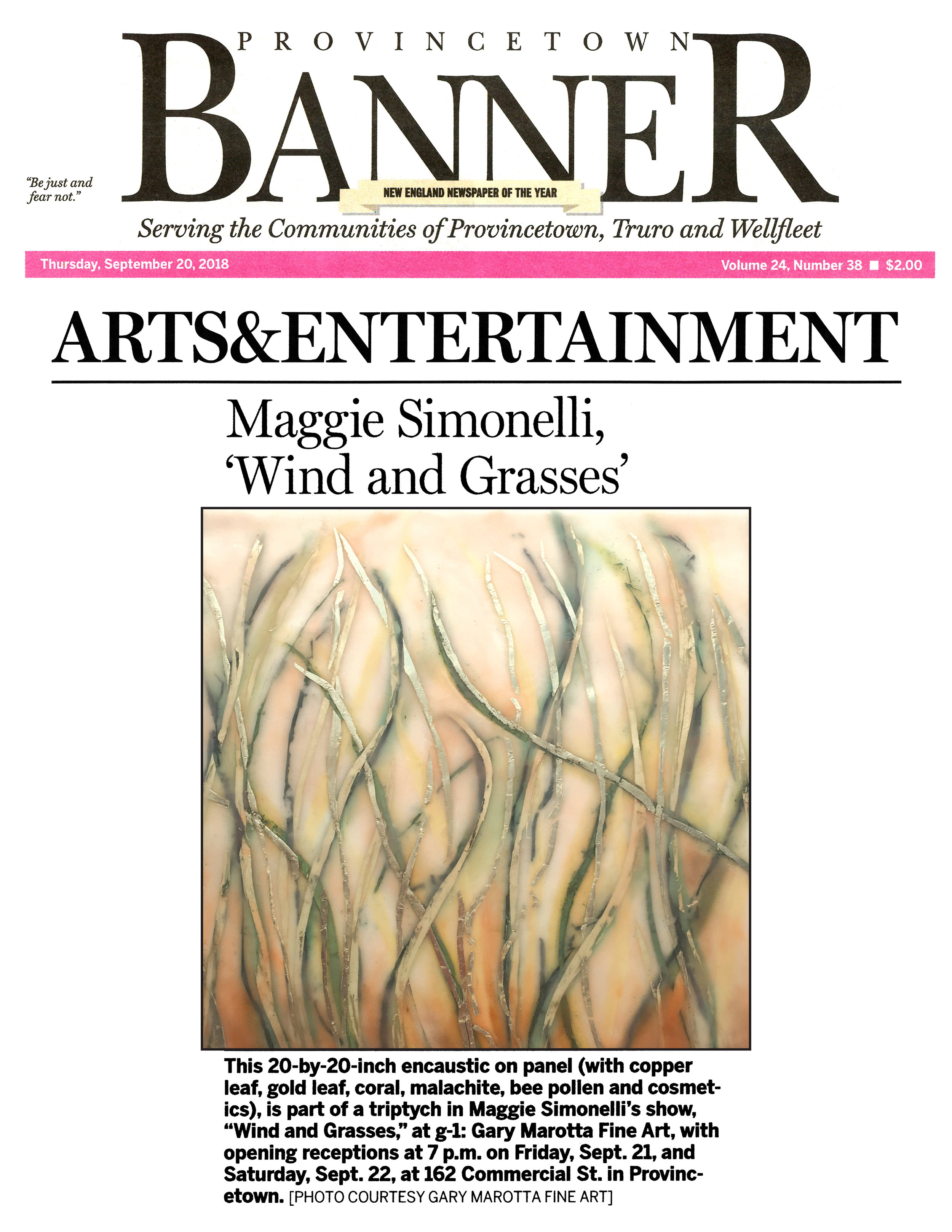 Wind and Grasses Provincetown Banner 09