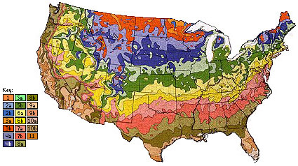 The old USDA zone map