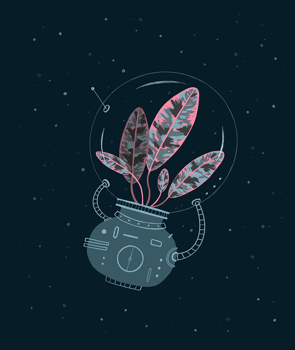 SpacePlant1 website.jpg