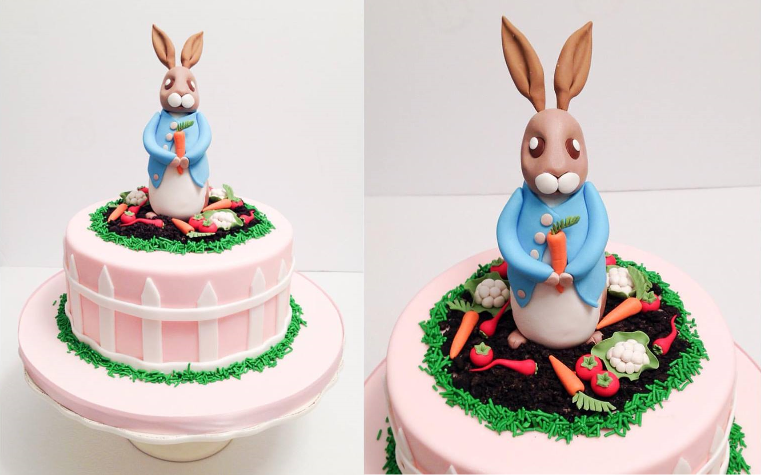 Peter Rabbit Cake edited.png