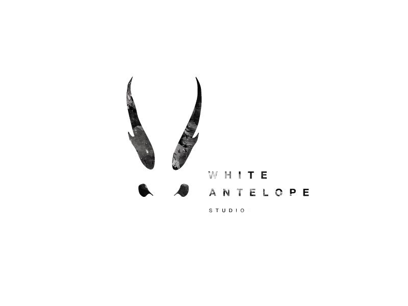 WhiteAntelopeStudios_PAINT-01.jpg