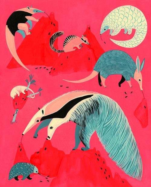 KTanis-Anteaters.jpg