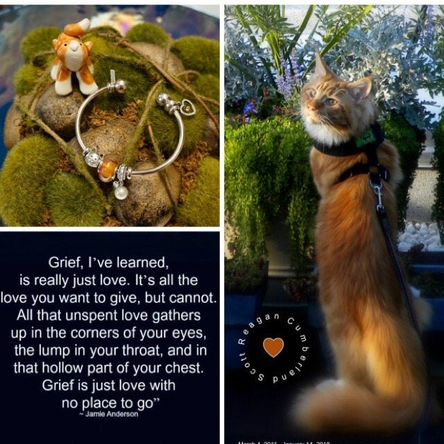 """- Patti and Roman are passionate artists with huge hearts and masterful skill! They created a gorgeous, one-of-a-kind Essence Bead for me as a memorial for my beloved Maine Coon Cat, Reagan. The color is a lovely, custom shade of sun-drenched orange, reminiscent of my boy's red hair in the sunshine of the Golden Hour. It is the perfect size and is the centerpiece of my Pandora bangle. I communicated with Patti via email and she was always extremely professional, kind, and sensitive to my requests. I highly recommend Locked In Art for your treasured memorial. Their workmanship and artistry are superb; their caring and compassion are exemplary! I have had my treasure for several weeks now, and I wear it every day. It is so comforting to have a part of my boy's, """"stardust"""" with me wherever I go. ~ Melissa Scott"""
