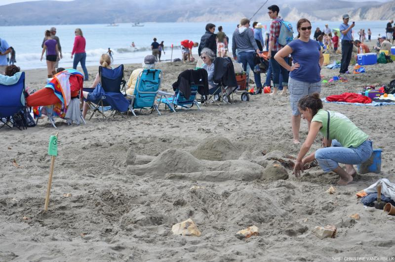 Ronnie, Sun Bathers, 2nd Place Solo, Point Reyes Sand Sculpture Contest, 2013. Photo by NPS/Christine Vanderbeek. Not bad considering 2 kids ran threw them. Make sure you are not in a heavy foot traffic.