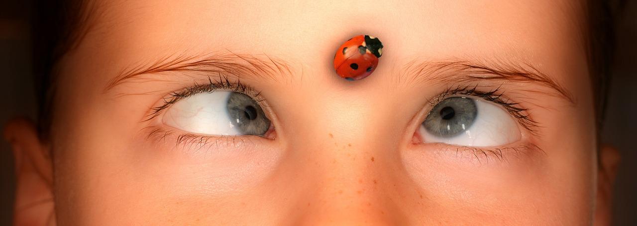 eyes-1192864_1280.jpg