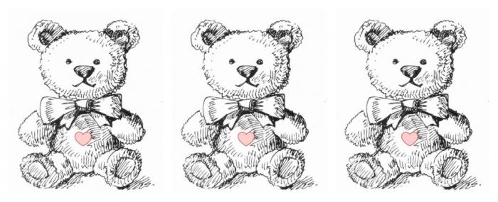Bear Banner_0.jpg