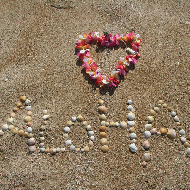 Week Five:Aloha Hawaii! - July 15 ‐ 19A fantasy trip to Hawaii involving songs and stories, Lei making and of course delicious Hawaiian food. Campers will be full of Aloha spirit at the end of each day.